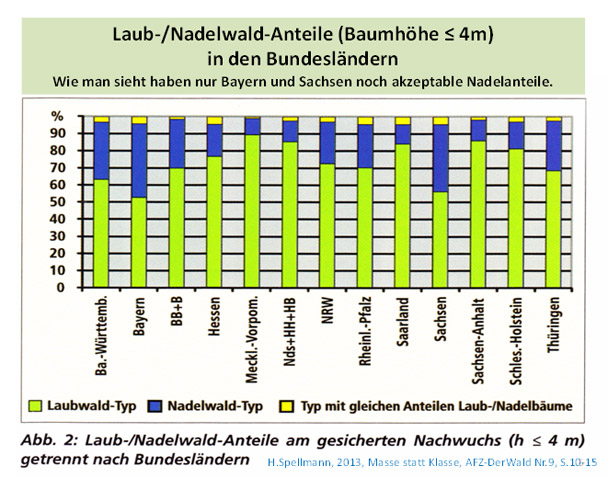Anteile Laub-Nadelwald