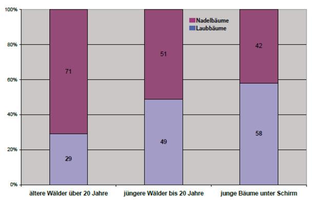 Verteilung Nadel-/Laubwald
